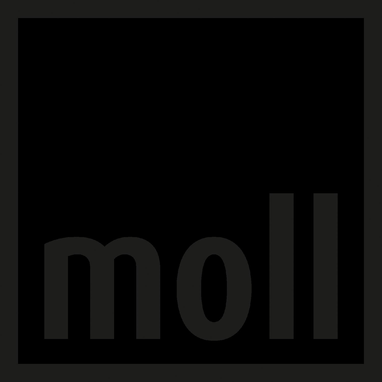 moll World – Kinderschreibtische und Home Office Möbel